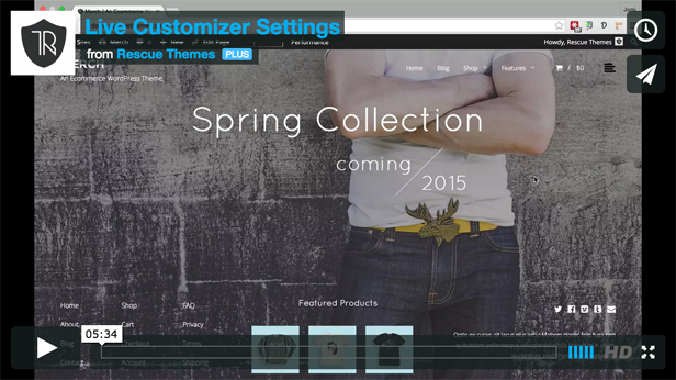 Customizer Overview